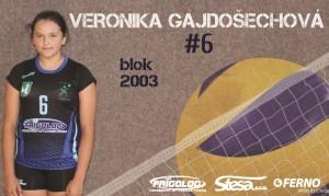 Veronika Gajdošechová